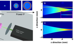 Optical Spatial Shock Waves in Nonlocal Nonlinear Media