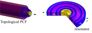 Topology into the Ring: new fibers and resonators