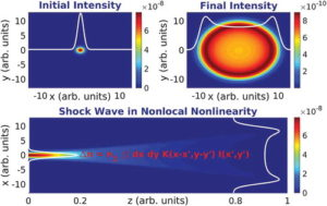 Optical spatial shock waves in nonlocal nonlinear media, a review paper