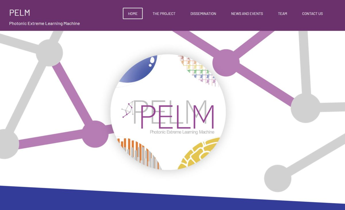 PELM project website online!