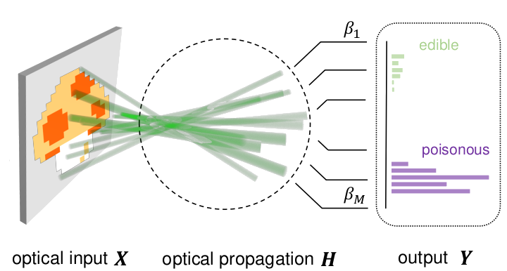 Photonic extreme learning machine by free-space optical propagation